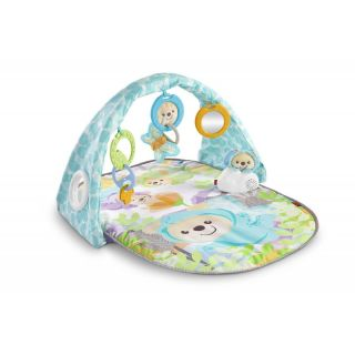 Fisher-Price Fisher Price Butterfly Dreams Musical Playtime Set DYW46 887961423945